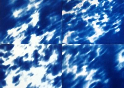Quadriptyque ombre portée de feuillages, 2011