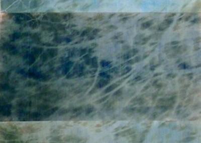 Ombre portée d'églantier, 2013