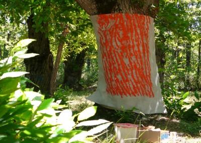 Empreinte de tronc en cours de fabrication